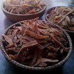 Khám phá phong cách thưởng thức khoai lang mới với người Quảng Bình