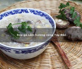 Súp gà nấm hương rừng Tây Bắc