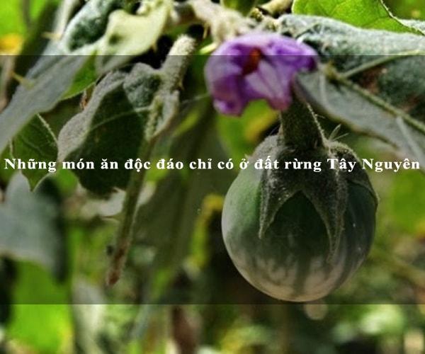 Những món ăn độc đáo chỉ có ở đất rừng Tây Nguyên 2