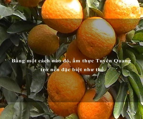Bằng một cách nào đó, ẩm thực Tuyên Quang trở nên đặc biệt như thế 9