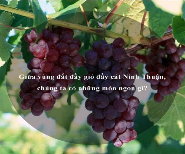 Giữa vùng đất đầy gió đầy cát Ninh Thuận, chúng ta có những món ngon gì? 1