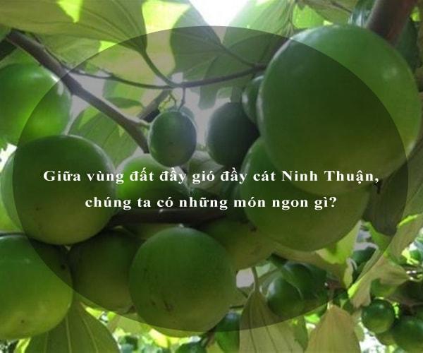 Giữa vùng đất đầy gió đầy cát Ninh Thuận, chúng ta có những món ngon gì? 3