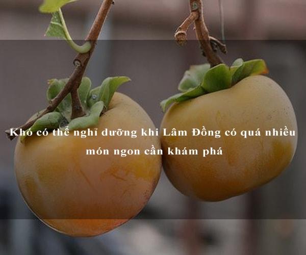 Khó có thể nghỉ dưỡng khi Lâm Đồng có quá nhiều món ngon cần khám phá 2
