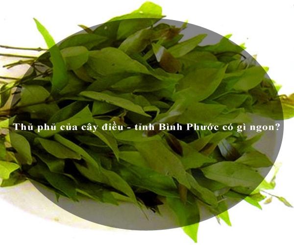 Thủ phủ của cây điều - tỉnh Bình Phước có gì ngon? 5